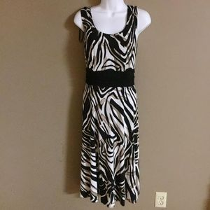 dress barn zebra dress